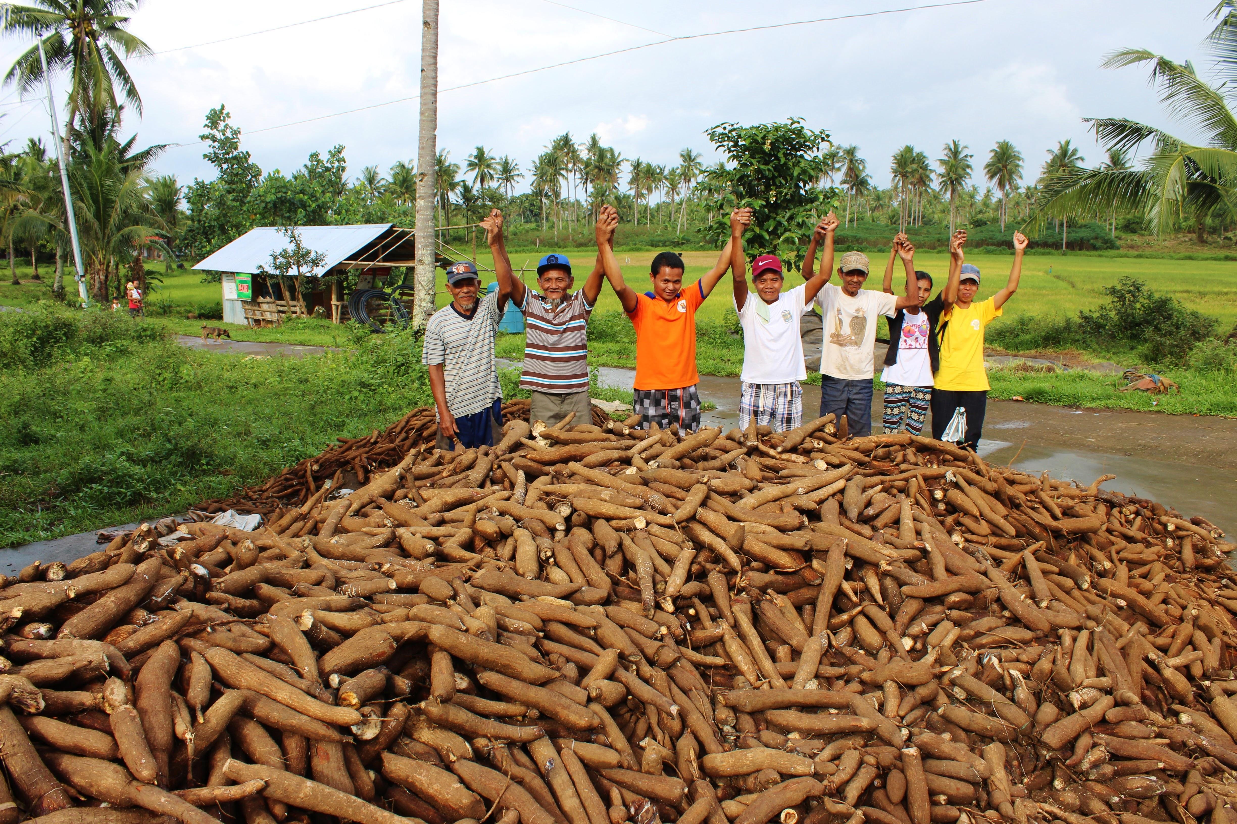 Establishing resilient livelihoods 5 years after Yolanda